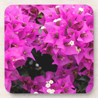 Purple Fuchsia Bougainvillea Background Coaster
