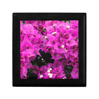 Purple Fuchsia Bougainvillea Background Gift Box