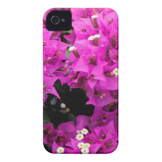 Purple Fuchsia Bougainvillea Background iPhone 4 Covers