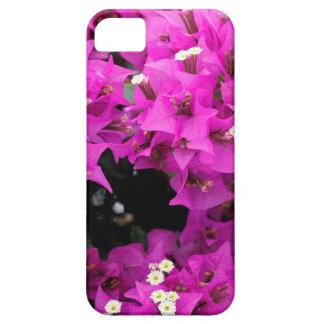 Purple Fuchsia Bougainvillea Background iPhone 5 Case