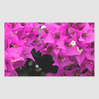 Purple Fuchsia Bougainvillea Background Sticker