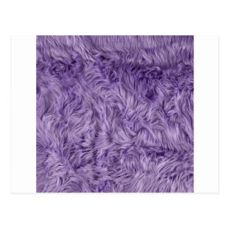 PURPLE FUZZY FUR POSTCARD