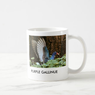 PURPLE GALLINULE  MUG
