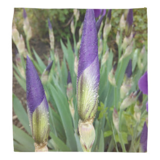 Purple German Iris Buds Bandana