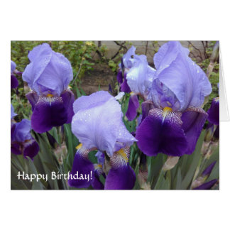 Purple German Irises Happy Birthday! Card