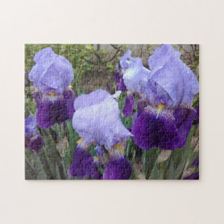 Purple German Irises Jigsaw Puzzle