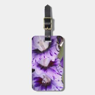 Purple Gladiolus Flolwers Luggage Tag