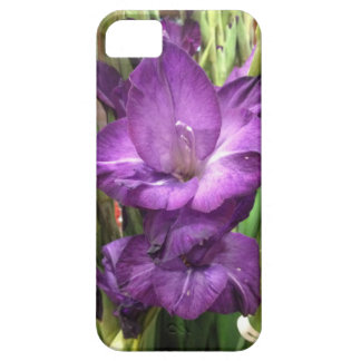 Purple Gladiolus Flower iPhone 5 Case