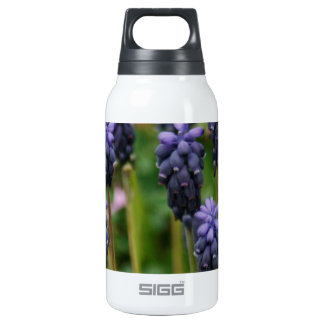 Purple Grape Hyacinth Wildflowers Insulated Water Bottle