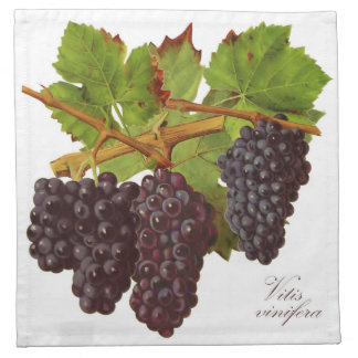 Purple Grapes Cloth Napkin (Set of 4)
