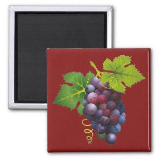 Purple Grapes Magnet