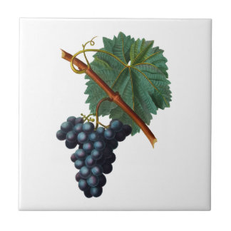 Purple Grapes with Leaf Redoute Ceramic Tile