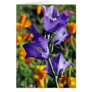 Purple  Harebells and California Poppies in Alaska Card