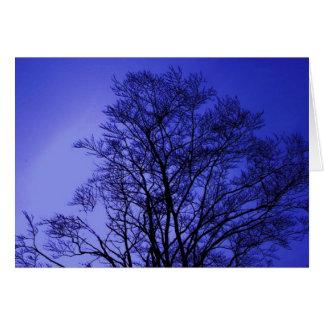 purple haze greeting card