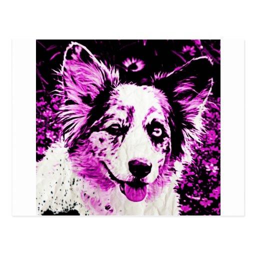 Purple Haze Maggie Post Card