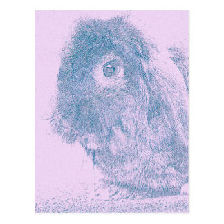 Purple haze rabbit postcard