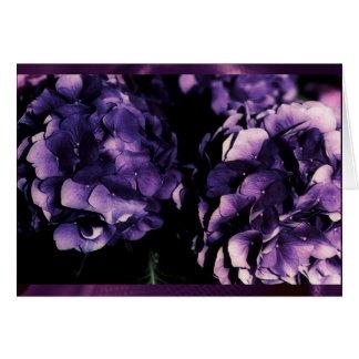 Purple Hydrangea floral, card templates