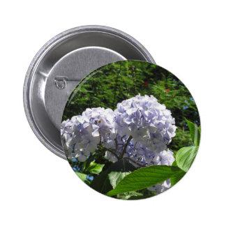 Purple Hydrangea flowers (Hydrangea macrophylla) 2 Inch Round Button