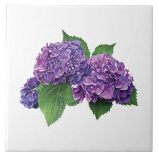 Purple Hydrangea Tile