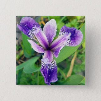 Purple Iris Button