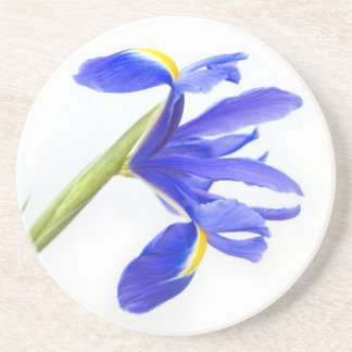 Purple Iris Flower Beverage Coasters