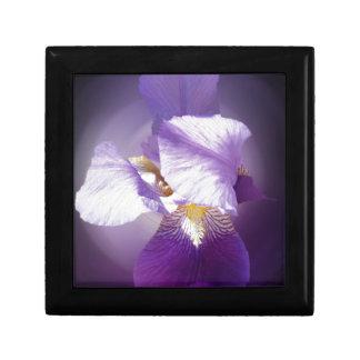purple iris flower gift box