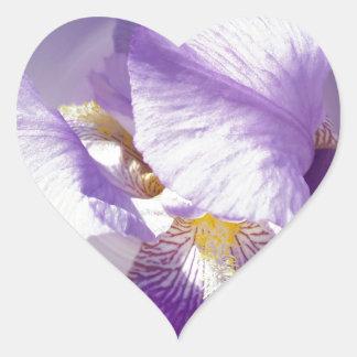 purple iris flower heart sticker