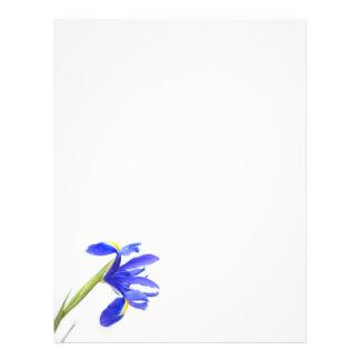 Purple Iris Flower Letterhead