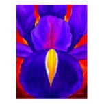 Purple Iris Flower Painting Art - Multi Post Card