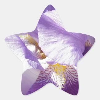 purple iris flower star sticker