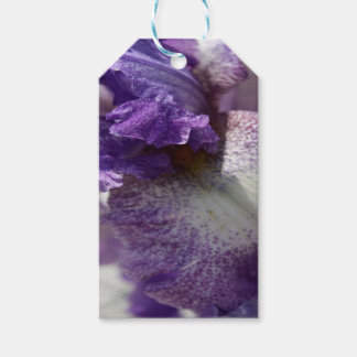 Purple Iris Gift Tags