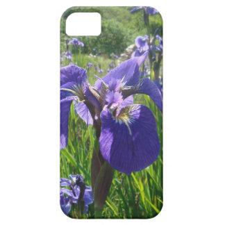 Purple Iris  IPhone5  Case