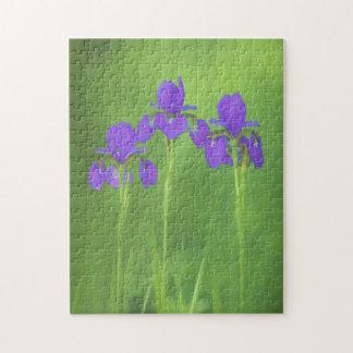 Purple Iris Jigsaw Puzzle
