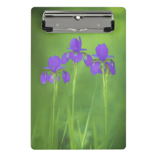 Purple Iris Painting - Original Flower Art Mini Clipboard