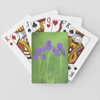 Purple Iris Playing Cards
