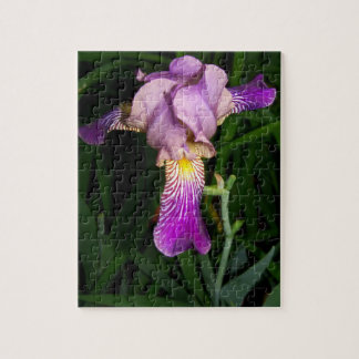 Purple Iris with Green Leaves Botanical Puzzle