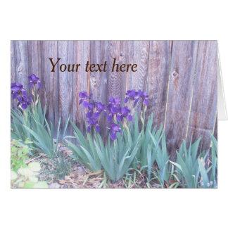 Purple Irises Flower Greeting Card