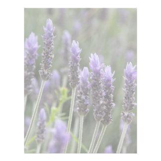 Purple Lavendar Letterhead