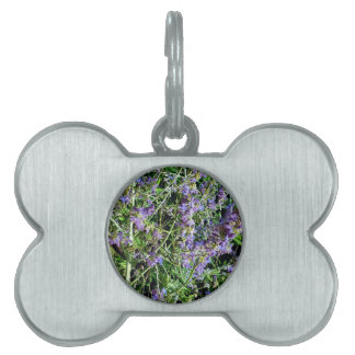 Purple Lavender Botanical Flowers. Pet Name Tags