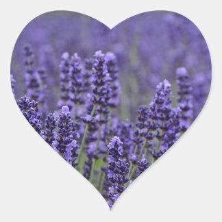 Purple lavender meadow heart sticker