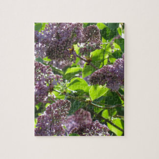 Purple Lilac Jigsaw Puzzle