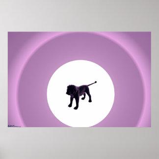 Purple Lion Poster