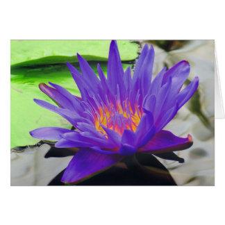 Purple Lotus Card