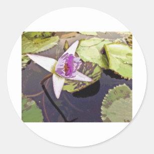Purple Lotus Flower Stickers Zazzle Ca