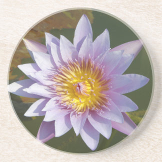 Purple Lotus/Water Lily Beverage Coasters