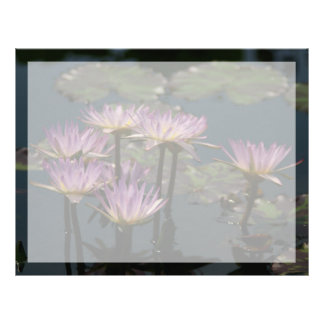 Purple Lotus Waterlilies Letterhead
