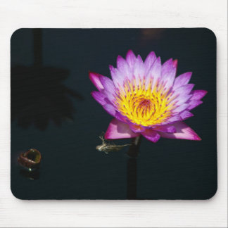 Purple Lotus Waterlily & Dragonfly Nymph Mouse pad