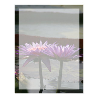 Purple Lotus Waterlily Flowers Letterhead