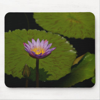 Purple Lotus Waterlily Mouse Pad