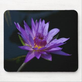 Purple Lotus Waterlily Mousepad